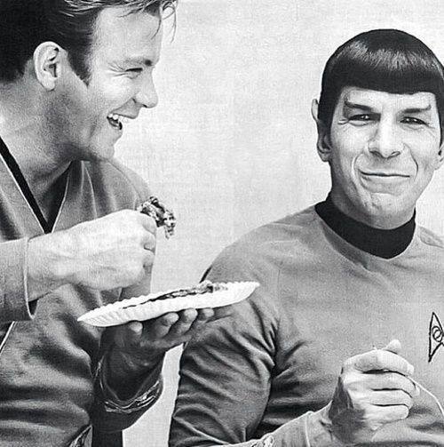 Pie makes everyone happy. Even Vulcans.