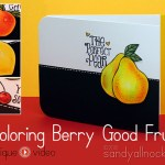 Realistic Copic Coloring Berry Good Fruit