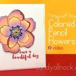 Magical Monday: Mondo Magnolia Colored Pencil Flowers