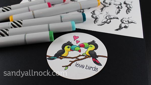 Sandy Allnock CB birds