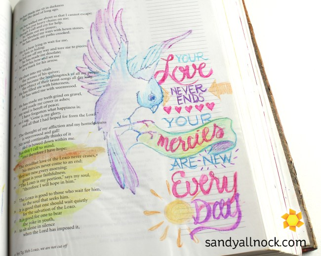 Sandy Allnock Bible Journal New Mercies