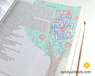 Sandy Allnock Bible Journal The Apple