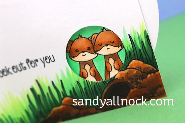 Sandy Allnock Spinning Wheel Card3