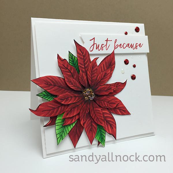 Sandy Allnock Mondo Poinsettia