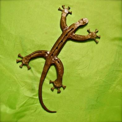 Horseshoe gecko by Charlie