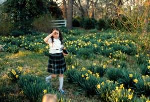 oakland road daffodils