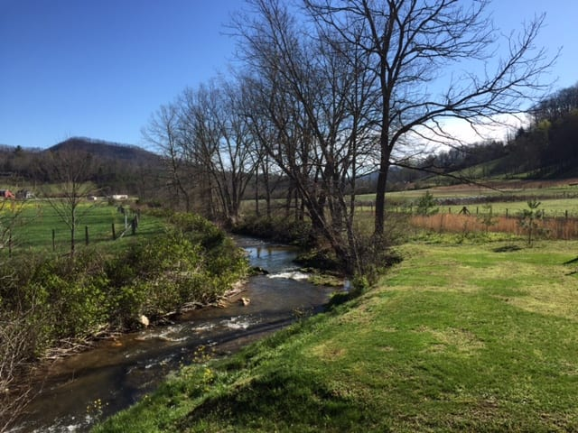 "View From Sandy Mush:  Conservation Notes  ""Riparian Boundaries Rock"""
