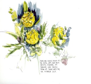 yellow roses drawing sketch
