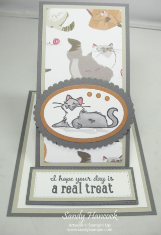 Pampered Pets Easel Card with video