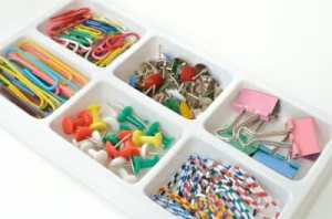 organization/items in tray compartments/zoning/sanespaces.com