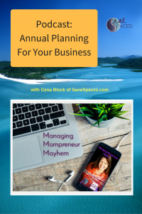 Annual Planning for Your Business Podcast SaneSpaces.com