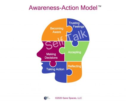 Awareness-Action Model, Sane Spaces, How To Take Informed Action
