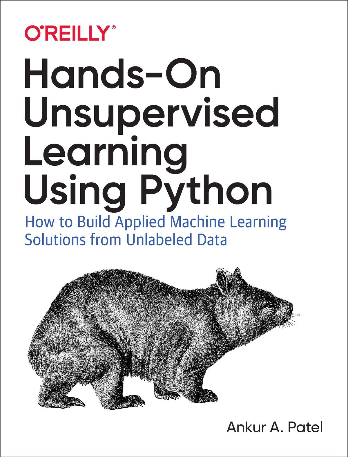 Download Hands-On Unsupervised Learning Using Python: How