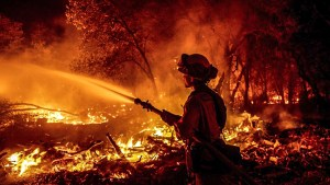 Firefighter, Forest fire, Forest fire