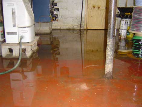 Basement Flooding Cleanup A Step By Step Guide San