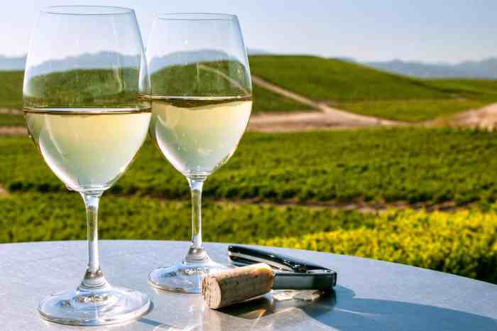 7 Hour Wine Country Tour to Sonoma