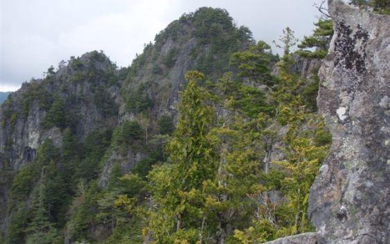 鶏冠山(2115M) 奥秩父鶏冠尾根