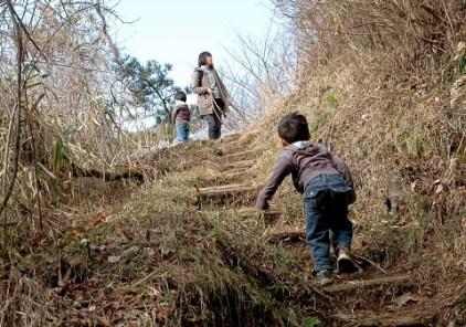 登山道はよく整備されています。