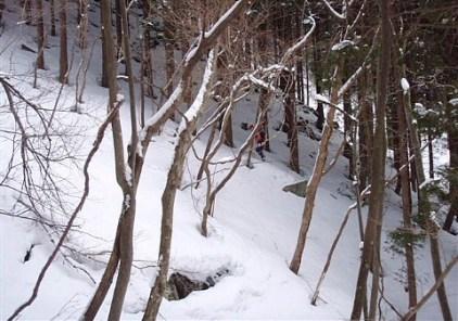 ③登山道を離れ尾根の直登も又楽し。
