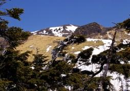 白谷山頂より焼岳方面