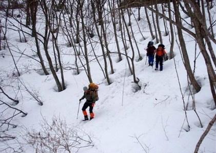 ⑭林道をショートカットして駆け下り、 又テクテク林道をスキー場Pへ。。。