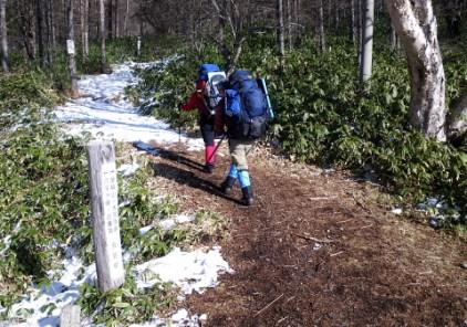 01雪の少ない女神茶屋前 登山口。