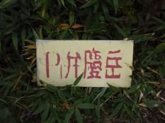 27‐→P1弁慶岳に着いたぁ~。