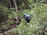 04‐藪の急登が続く。