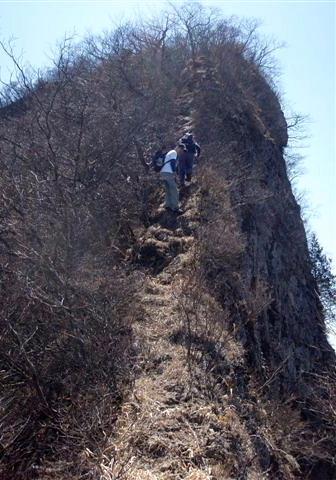 ⑥山頂直下のナイフエッジの急登は南側は垂直に切れ落ちてる。      クワバラ、クワバラ。