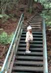 階段からふりかえる。