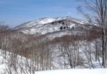 稜線の途中から姥ヶ岳をふり返りました。