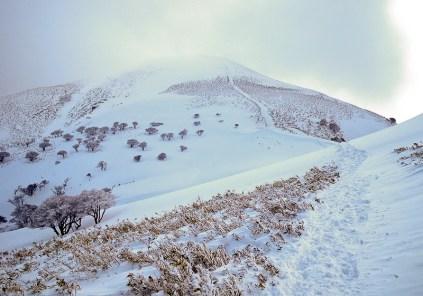048-24 竜ヶ岳山頂を振り返る。