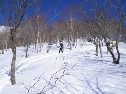15.雪原にシュプール