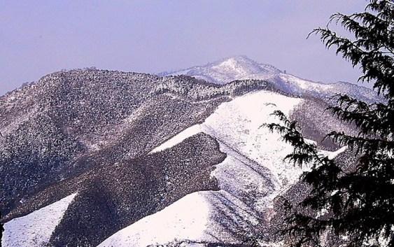 2001.1.21(日)1月定例山行 仏ヶ尾山(1139m)(岐阜県萩原町)