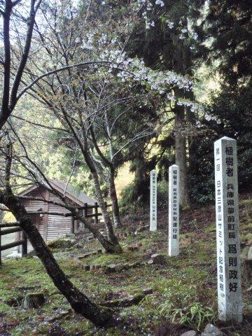 04三彦山記念樹
