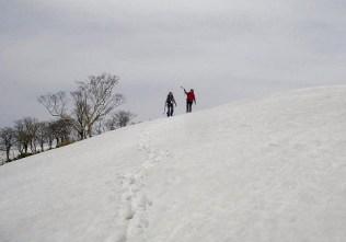山頂付近の雪原