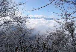 06.西峰下山時に姿を見せてくれた中央アルプスの峰峰