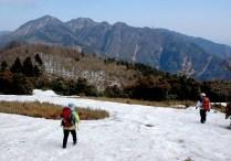 笹枯れ観察の定点を探す。バックは仙ガ岳。