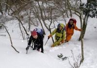 2008年2月17日 定例山行B 鎌ヶ岳(湯の峰)(鈴鹿)