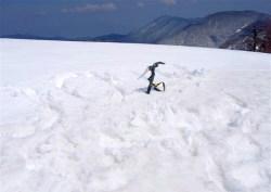 ⑧丸い小峰の六百山頂上2449m。三角点は雪の下。