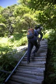 登山道は良く整備されています