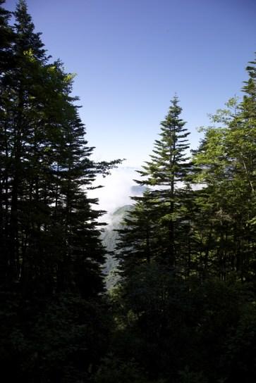 伊那谷方面は雲海の中。 そば焼酎~雲海。