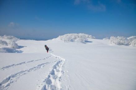 2012年01月29日御池岳 (66)