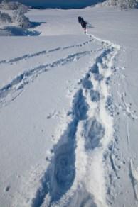 2012年01月29日御池岳 (65)