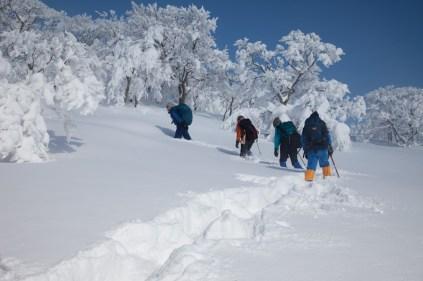 2012年01月29日御池岳 (42)