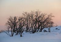 2013年1月11日~12日御池岳
