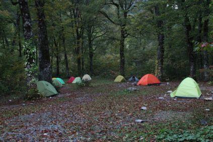 01 わさび平のテント場