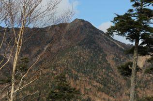 43 林道から見た女峰山