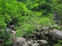 8m滝手前の右岸支流へ