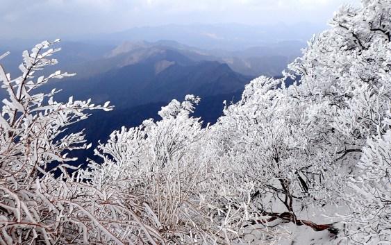 高見山(1,248m)